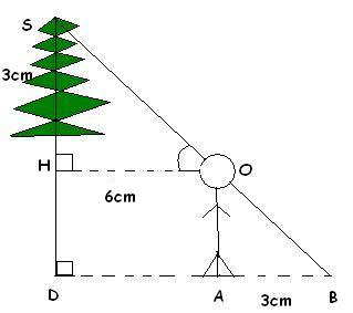 Exercice de trigonométrie - forum de maths - 216671