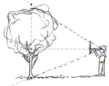 comment mesurer la hauteur d 39 un arbre d m 3 me exercice de math matiques de troisi me 389618. Black Bedroom Furniture Sets. Home Design Ideas